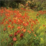 John Ottis Adams (1851-1927)  In Poppyland  Oil on canvas, 1901  22 x 32 inches (55.88 x 81.28 cm)  Ball State University Art Museum