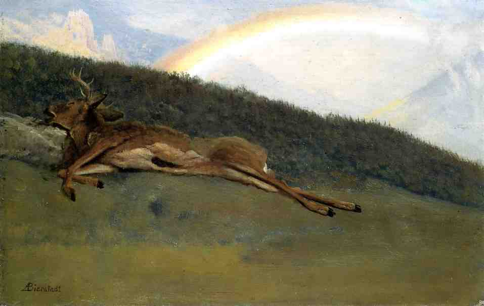 Albert Bierstadt (1830-1902)  Rainbow over a Fallen Stag  Oil on paper laid down on board  10 5/8 x 16 5/8 inches (26.99 x 42.23 cm)  Public collection