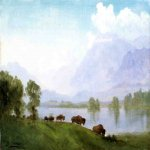 Albert Bierstadt (1830-1902)  Buffalo Country  Oil on canvas  14 x 19 inches (35.56 x 48.26 cm)  Public collection