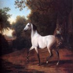 Jacques-Laurent Agasse (1767-1849)  A Grey Arab Stallion In A Wooded Landscape  Oil on canvas  35 x 44 1/2 inches (88.90 x 113.03 cm)  Private collection