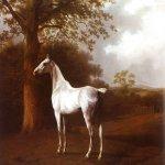 Jacques-Laurent Agasse (1767-1849)  White Horse in Pasture  Oil on canvas, 1806-1807  Oskar Reinhart Foundation, Winterthur