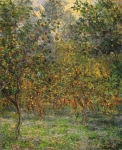 Claude Monet (1840–1926) Apple Trees Oil on canvas, 1884