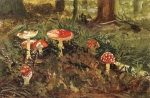 Ivan Ivanovich Shishkin (1832 – 1898)   Amanita. Study   Oil on canvas, 1878-1879   12.8 x 19.6  cm
