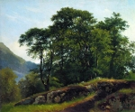 Ivan Ivanovich Shishkin (1832 – 1898)   Beech Forest in Switzerland   Oil on canvas, 1863   51 x 61.5 cm