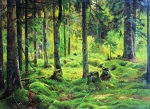 Ivan Ivanovich Shishkin (1832 – 1898)   Deadwood. Study   Oil on canvas, 1893