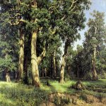 Ivan Ivanovich Shishkin (1832 – 1898)   The oak grove  Oil on canvas, 1887  1250õ193 ñì  cm  The Museum of Russian Art, Kiev, Ukraine