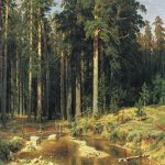 Ivan Ivanovich Shishkin (1832 – 1898)   Mast-Tree Grove  Oil on canvas, 1898  165х252 см  cm  The State Russian Museum,St. Petersburg, Russia