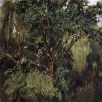 Vasnetsov Viktor Mikhailovich (1848 — 1926)  Akhtyrsky oak. The beginning of 1880  Oil on canvas  The State Tretyakov Gallery, Moscow, Russia