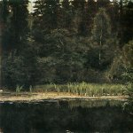Vasnetsov Viktor Mikhailovich (1848 — 1926)  Alenushkin pond (Pond in Okhtirka), 1880  Etude for the painting