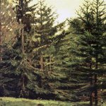 Vasnetsov Viktor Mikhailovich (1848 � 1926)  Edge of spruce forest, 1881  Sketch for the painting